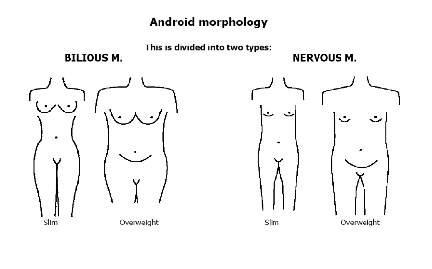 Android Morphology