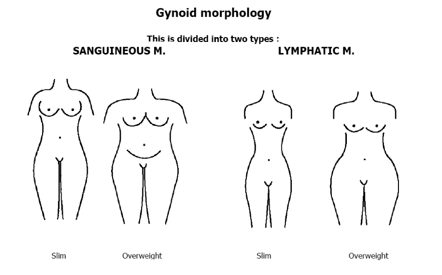 Gynoid Morphology